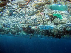 Marine-debris-via-www-dot-greenfudge-dot-org-1.jpg